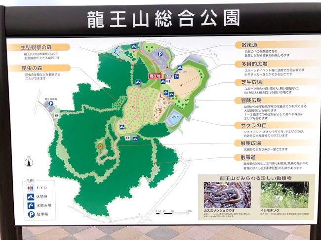 龍王山総合公園